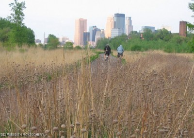 Prairie and the city